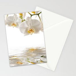 White Orchids Stationery Cards