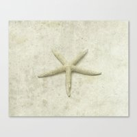 starfish Canvas Prints featuring Starfish by Deborah Lehman