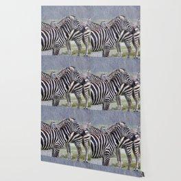 Zebras in the Rain Wallpaper