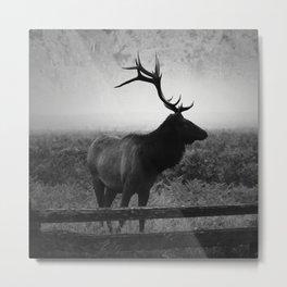 Mystic Elk Metal Print