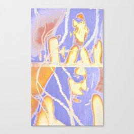 Mixed Media 6 Canvas Print