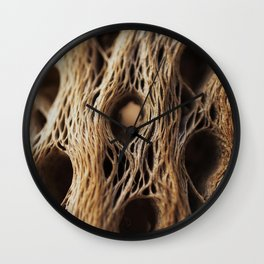 Fire Cholla Skeleton Wall Clock