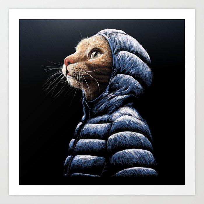 COOL CAT Kunstdrucke