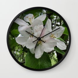 Wild Maine Apple Blossoms Wall Clock