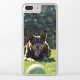 Onea, Australian Cattle Dog Clear iPhone Case