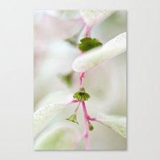 Tiny Trumpet Flower Canvas Print