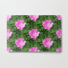 Wild Rose Pattern Metal Print