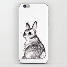 Ballpoint Bunny iPhone & iPod Skin