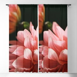 Being Seen Blackout Curtain