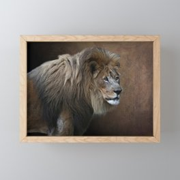 Elderly Gentleman - Male Lion Framed Mini Art Print