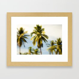 Palm Glimps by Boone Speed Framed Art Print