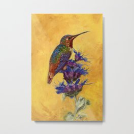 Allen's Hummingbird on Bee Balm Metal Print