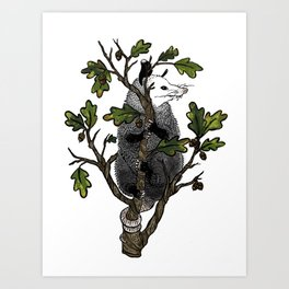 Oak Opossum by Boo Hag Art Print
