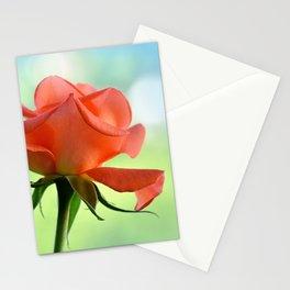 Rose 111 Stationery Cards
