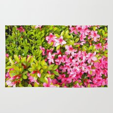 Colorful garden flowers, pink azalea. Floral photography. Rug