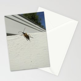 Bugs #4 Stationery Cards