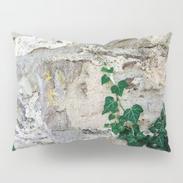 Follow Your Intuition Photography Pillow Sham