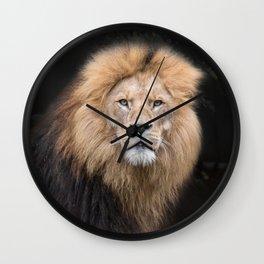 Closeup Portrait of a Male Lion Wall Clock