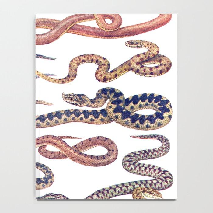 snakes Notebook