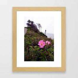 Pink Wild Rose, Gravels Park, Newfoundland Framed Art Print