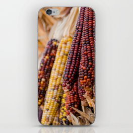 Indian Corn 6 iPhone Skin