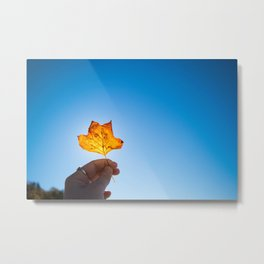 Illuminated Metal Print
