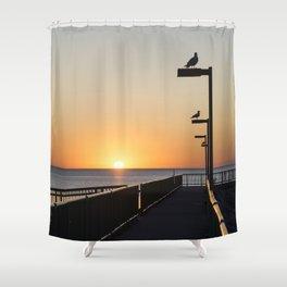 Sunrise Seagulls Shower Curtain