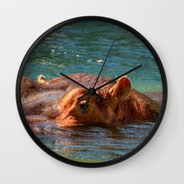 African hippo swimming in water Wall Clock