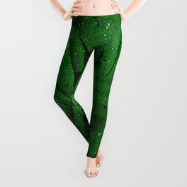 Layers Of Wet Green Fern Leaves Patterns In Nature Leggings