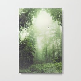 German Jungle - Forest in Morning Mist Metal Print