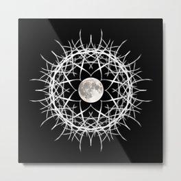 Midnight's Claws Metal Print