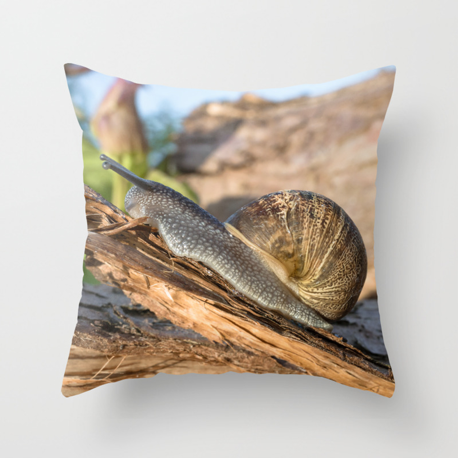 Common British Brown Garden Snail Throw Pillow By Jjvxphotography Society6
