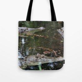 Crocodiles Tote Bag