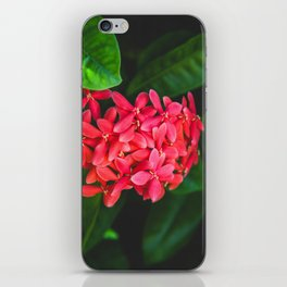 Secret Red Bunch Of Blowers Among Bright Green Leaves Nature Art iPhone Skin