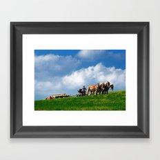 Amish farmer plowing Framed Art Print