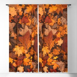 Autumn Fall Leaves Blackout Curtain