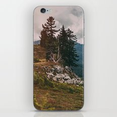 Northwest Forest iPhone & iPod Skin
