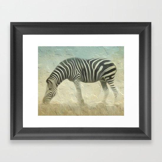 Zebra grazing Framed Art Print