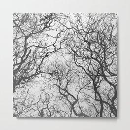 #249 #SleepingTrees Metal Print