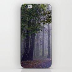 MISTY DAY iPhone & iPod Skin