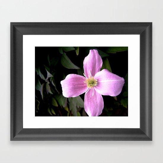 flora IX Framed Art Print