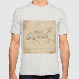 Da Vinci Horse: Canter T-shirt