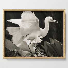 White bird dance 3 Serving Tray