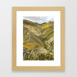 Carrizo Plain Wildflowers Framed Art Print