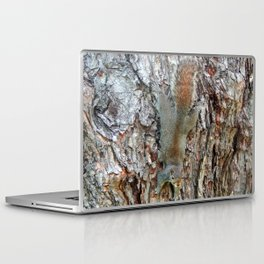 Find The Squirrel Laptop & iPad Skin