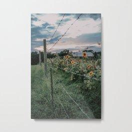 Sky and Sunflower Metal Print