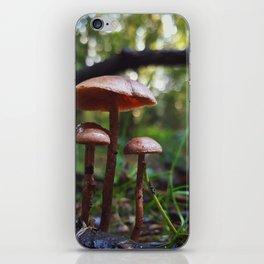 Tiny world iPhone Skin