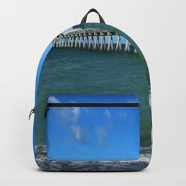 Winter In Florida Backpack