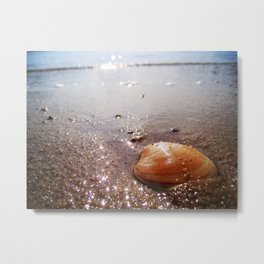 Washed Up Protection Metal Print
