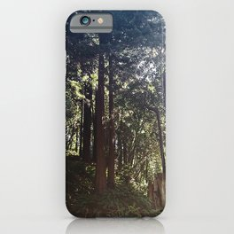 Redwoods Secret Staircase iPhone Case